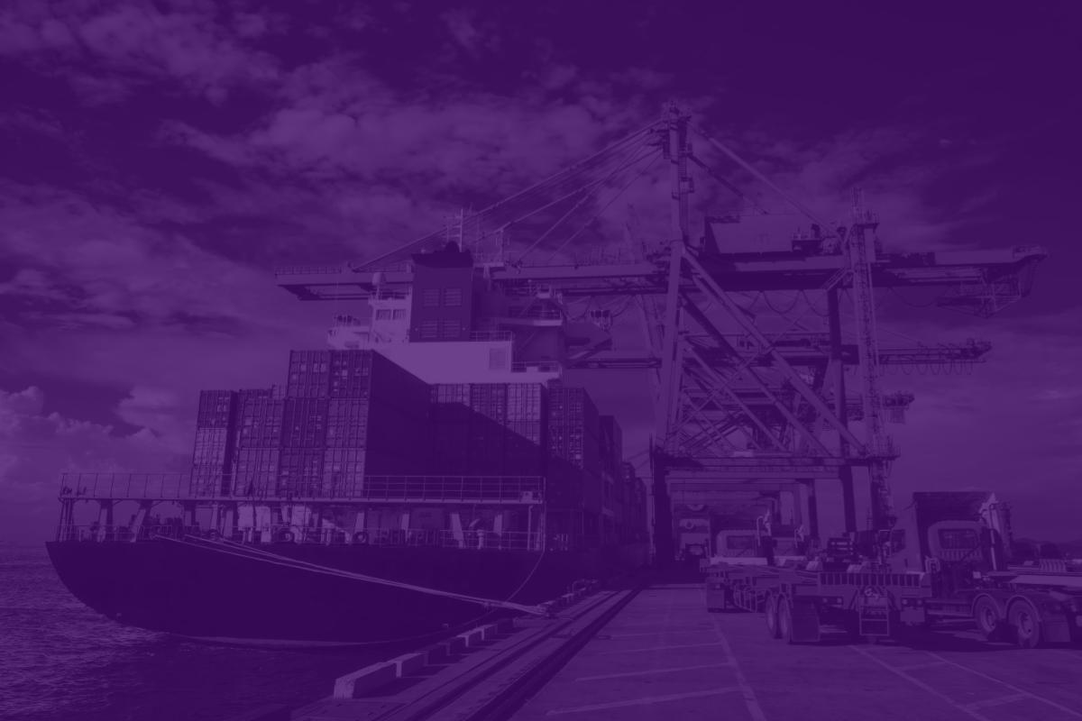 Automação em portos, aeroportos e terminais